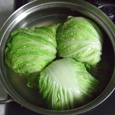 ロール白菜1